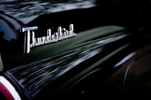 Auto Schriftzug entfernen - Thunderbird Schriftzug